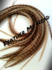 """Feather Extension For Hair,  Whiting Eurohackle, Fawn, Long 9-12""""  22.86-30.48cm"""