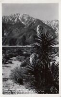 RPPC Postcard Mt San Jacinto Near Shields Date Gardens Indio CA