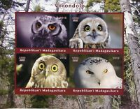 Madagascar 2018 MNH Owls Little Snowy Owl 4v Impf M/S Birds of Prey Stamps