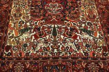 CIRCA 1930s ANTIQUE RARE PERSIAN BAKHTIARI TREE OF LIFE RUG 5.2x8.5  COLORFUL