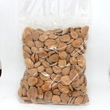 Apricot kernels seeds bitter organic raw vitamin B17 natural bio 7 oz