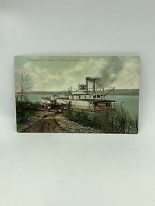 Loading Cattle On Steamboat Wharfboat Catlettsburg KY PostCard