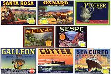 8 OLD CITRUS CRATE LABELS VINTAGE VENTURA CO.OXNARD CALIFORNIA 1930-1940S