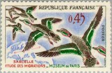 EBS France 1960 Bird Migration - Common Teal MNH** (FR1333)