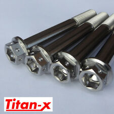 Yamaha R6 1998-02 5EB Titanium caliper bolt kit, dual drive M10x30 Drilled