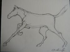 Original pencil drawing on ivory mount card of a horse galloping running
