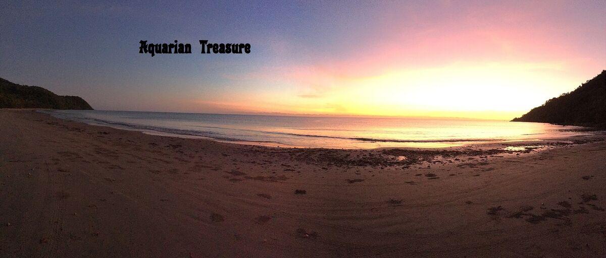 Aquarian Treasure