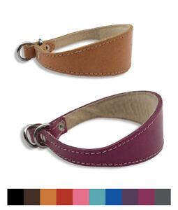 "Italian Greyhound Slip 10""-12"" UK Handmade Quality Leather Padded Dog Collar"