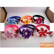 Pet Adjustable Collar with Flower - Orange