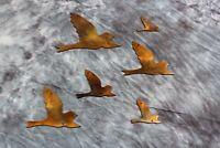 Flying Birds Copper/Bronze right facing  Metal Wall Decor