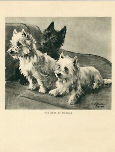 WEST HIGHLAND WHITE AND SCOTTISH TERRIER WESTIE VINTAGE 1930 DOG ART PRINT