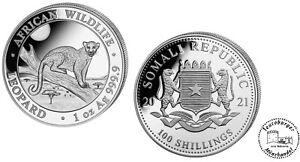Somalia 100 Shillings African Wildlife 2021 Leopard  1 oz 999 Silber *BU*