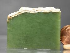 New listing Apple green Wyoming 100% Natural Rough Jade Slice Slab Specimen 1