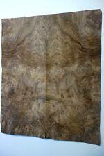 Burr/Burl Walnut Veneer/Dashboard   65 cm by 27 cm  (1517)