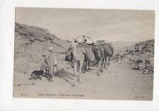 Sahara Algerien Caravanne de Nomades Vintage Postcard 587a