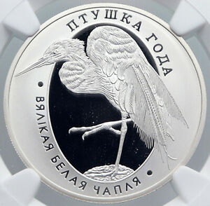 2008 BELARUS Animal GREAT WHITE EGRET BIRD Proof Silver 10 Ruble Coin NGC i89223