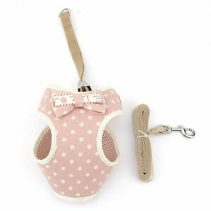 Puppy Cat Clothing Teddy Vest Chest Strap Cat Harness with Rope Dog Rope