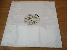 "The Romatt Project Featuring Gail Powers ‎– What U Got 2 Have Vinyl 12"" PROMO"