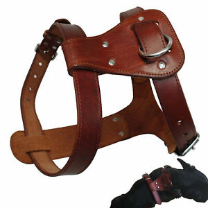 Leather Dog Harness Small Large Pet Vest Heavy Duty for Pit Bull Boxer