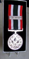 Canadian - The Special Service Medal (SSM) & PEACE - PAIX Bar Full Size