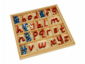 Movable Alphabet Small D'Nealian RcBv (box not included)