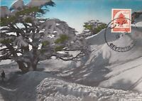 MXC85) 1960, Lebanon, The Cedars, maximum card $29.00