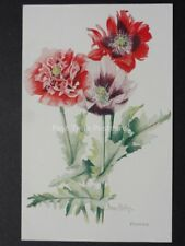 Poppies: Art by Nora Hedley by J.Salmon No.762