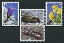 Romania 2018 MNH Natural Parks 4v Set Beetles Flowers Turtles Nature Stamps