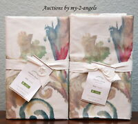 NEW Pottery Barn CLAUDIA PRINT ORGANIC King Shams SET/2 * watercolor swirls