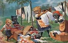 """Old Print Netherlands """"Cats Laundry Accident"""""""