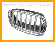 BMW X5 X6 2007 2008 2009 2010 2011 2012 Grille Chrome Frame with Titanium Grille