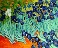 Van Gogh Field with Irises Repro, Quality Hand Painted Oil Painting 20x24in