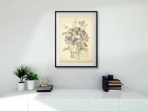 Rennie Mackintosh black FRAMED PRINT Heartsease A4 digital print 11 x 14 frame