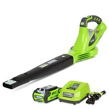 Leaf Blowers Battery Powered GreenWorks 40v Best Cordless Lawn Sweeper 150 MPH