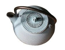 TopStyle Cast Iron Teapot Light Blue 0.3L