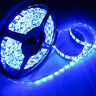Superbright DC 24V 5M 5050 SMD 300 leds Blue Flex LED Strip Light Waterproof New