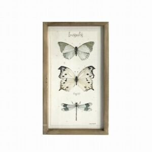 Butterfly & Dragonfly Canvas Print With Wooden Frame Insects Picture Home