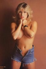 SAMANTHA FOX Show 80s & 90s Posters Teen TV Movie Poster 24X36 101