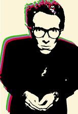 Elvis Costello Poster, Pop Art, Punk, New Wave, Iconic Rock Musician
