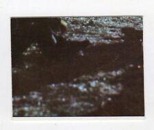 figurina - PANINI PINOCCHIO 1972 - numero 291