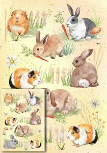 Rabbit & Guinea Pig Animal Gift Wrapping Paper by Starprint - with matching card