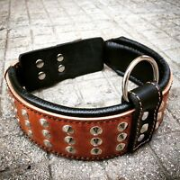 Genuine leather hand made dog collar, studded, padded, Top Quality. XS- XL
