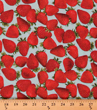 Cotton Strawberries Strawberry Fruit Spring Cotton Fabric Print by Yard D466.30