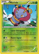 Muciole Reverse - XY - 8/146 - Carte Pokemon Neuve - Française