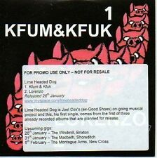(17D) Lime Headed Dog, Kfum & Kfuk / Lorenzo - DJ CD