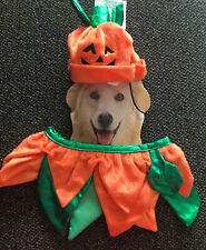 PUMPKIN Halloween Dog Pet Costume 2 PC Size M/L Headpiece