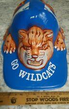 VERY RARE VINTAGE KENTUCKY WILD CATS FOOTBALL HAT MOLDED PLASTIC MASCOT CAP