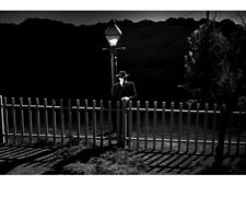 The Night Of The Hunter Robert Mitchum By Lamp Post Picket Fence 18x24 Poster