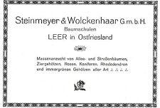 Steinmeyer & Wolckenhaar G.m.b.H. Leer BAUMSCHULEN Historische Reklame von 1932