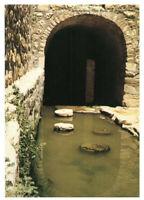 Jerusalem: Pool of Siloe, Israel, Palestine Rare Vintage Postcard